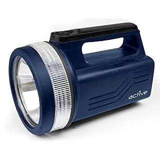 AP 118 Lumens LED Spotlight 6V 4R25