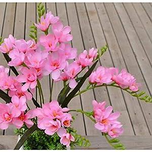 keeldsjf 18 Unids por Lote Freesia Flor Orquídea Falsa Tallo Único para Boda Centros De Mesa Arreglo Floral Artificial…