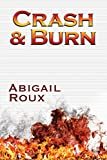 Crash & Burn (Cut & Run Series Book 9) (English Edition)