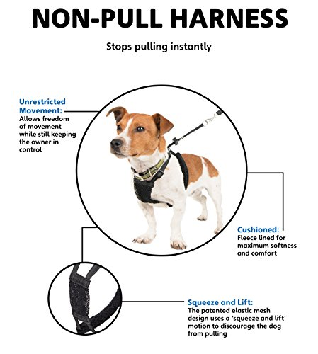 Company of Animals Non-Pull Harness, Black Medium