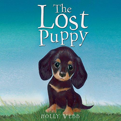 The Lost Puppy  Audiolibri