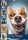 Funny Faces - Lustige Hundebilder (Wandkalender 2019 DIN A3 hoch): Herrliche Hunde-Gesichter mit einer Prise Humor. (Monatskalender, 14 Seiten ) (CALVENDO Tiere)