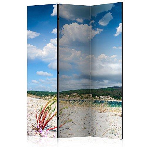 murando Biombo con Tablero de Corcho Playa Mar 135x172 cm - de Impresion Bilateral en el Lienzo de TNT de Calidad - Decoracion Cuarto - Biombo de Madera con Imagen Impresa c-B-0353-z-b