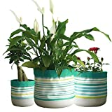 Dewanxin-Zuhause Pflanze Blumentopf Lagerung Barrel Basket Startseite Innovative Wasserdichte Stoff Pflanzer Faltbar (L, Streifen)