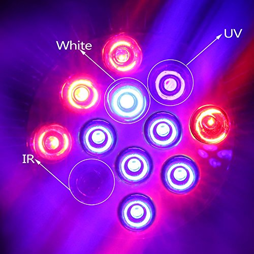 Derlight-E27-12-W-espectro-completo-crecer-bombilla-con-azul-y-rojo-y-IR-UV-LED-luz-de-crecimiento-de-plantas-para-interiores-jardinera-sistema-de-hidropona-Iluminacin-de-efecto-invernadero-planta-de-