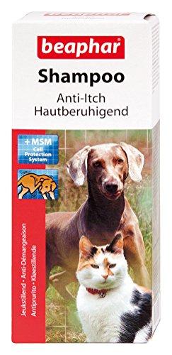 Beaphar Shampoo für Hunde/Katzen, mit MSM, gegen Juckreiz, zur Stärkung des Haars, 200ml