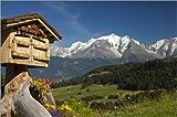 Poster 150 x 100 cm: Briefkasten und Mont-Blanc-Massiv,