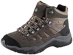 McKINLEY Damen Wabash Ii AQX Trekking-& Wanderstiefel, Grau D.Grau/Silver, 39 EU
