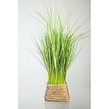 Plante artificielle touffe d 39 herbe vert jaune dans un for Amazon plante artificielle