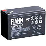 Tecnoware EACPE12V9AFIFGH batería para sistema ups - baterías para sistemas ups (Sealed Lead Acid (VRLA), 9 Ah, 12V, 2,8 kg, 6,5 cm, 9,4 cm) Negro
