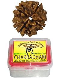 CHAKRADHARI 100% Original and Natural Mantra Siddha Rare 4 Mukhi Nepal Rudraksha with Lab Test Certificate and Xray Report R4