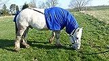 Pferdehalsdecken Ekzemerdecke mit Schweifschutz (Kaltblut, royal)