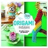 Origami modulaire : 20 modèles à réaliser pour déstresser - Créer pour mieux vivre...