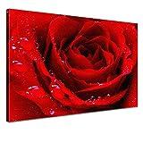 LANA KK - Leinwandbild Liebe Red mit Blumen auf Echtholz-Keilrahmen – Frühling und Natur Fotoleinwand-Kunstdruck in rot, einteilig & fertig gerahmt in 120x80cm