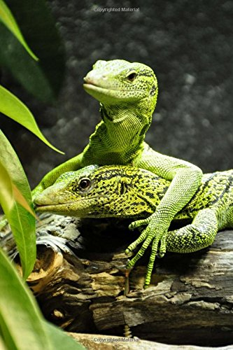 Two Yellow Spotted Tree Monitor Lizards Journal: 150 Page Lined Notebook/Diary - Lizard Monitor