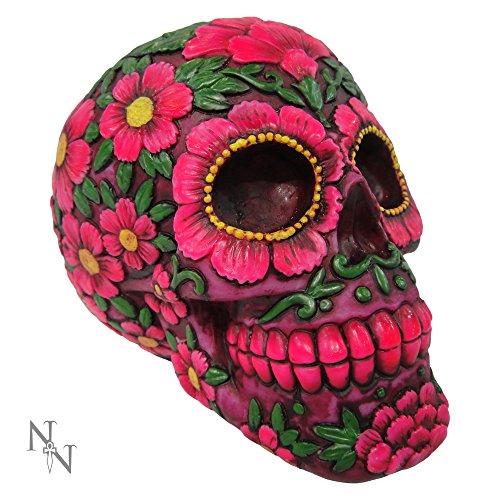Hucha Nemesis Now Sugar Skull Blossom (Multicolor)