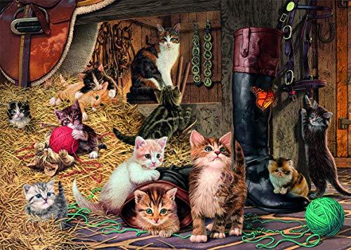 Dino Toys 532656 - Puzle Secreto: Juguete para Gatos