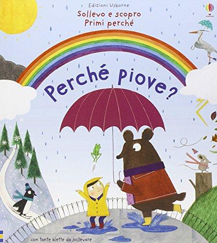Perch piove? Ediz. illustrata