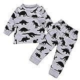 i-uend Baby Pyjamas Sets, Baby Baby Langarm Cartoon Dinosaurier Print Tops + Hosen Kleidung Outfits Für 3-24 Monate