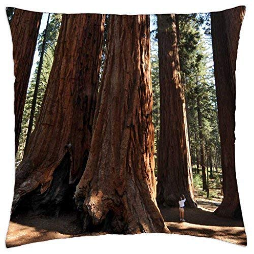 Nature's Oasis - Throw Pillow Cover Case (18