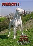 INDIGOS UG - Türschild FunSchild - SE467 DIN A4 ACHTUNG Hund DOGO ARGENTINO - für Käfig, Zwinger, Haustier, Tür, Tier, Aquarium - aus hochwertigem Alu-Dibond beschriftet sehr stabil