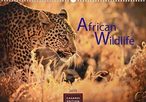 African Wildlife 2019 - Format L