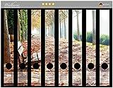Wallario Ordnerrücken Sticker Einsame Parkbank an Einer Allee - Herbststimmung in Premiumqualität - Größe 8 x 3,5 x 30 cm, passend für 8 Schmale Ordnerrücken