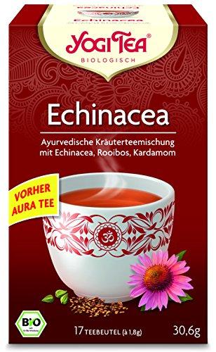 Ingwer Echinacea Tee (10 x Yogi Tee BIO Echinacea Aura (=10er Pack) (frachtfreie Lieferung in DE))