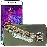 Just carcasa caliente estilo teléfono celular PC Funda rígida//m00139820Caterpillar insectos Naturaleza de fondo//Samsung Galaxy S6(no para S6edge)