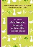 De la lavande, du persil, de la menthe et de la sauge : Des remèdes naturels et respectueux de lenvironnement pour le b
