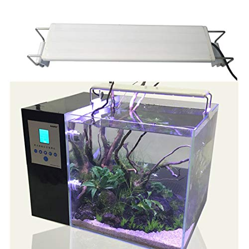 Aquariums & Tanks Hospitable 1pcs Usb Desktop Electronic Aquarium Mini Fish Tank With Water Running Led Pump