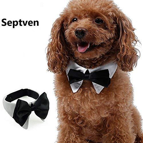 Septven Gute Qualität Gentleman Aussehen Haustier Fliege Kragen Haustier Schal Handtuch Krawatte (L, Weiß) (Floral Print Handtücher)