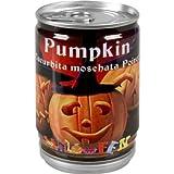 Diverse Kürbis aus der Dose Halloween Pumpkin