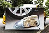 Breewell 12V Handheld Car Vacuum Cleaner with 14 Feet Power Cord, HEPA Filter and LED Lamp (Multicolour)