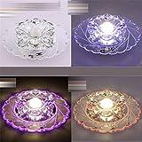 PLQ Deckenleuchten Korridor eingebettete Projektionslampe Spotlight Wohnzimmer künstliche Kristall Farbe Blume 20cm LED Deckenleuchte, A-5W, bunt dimmen