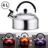 ORPIO (LABEL) Stainless Steel 2L Capsulated Base Tea Kettle, Camping Whistling Kettle