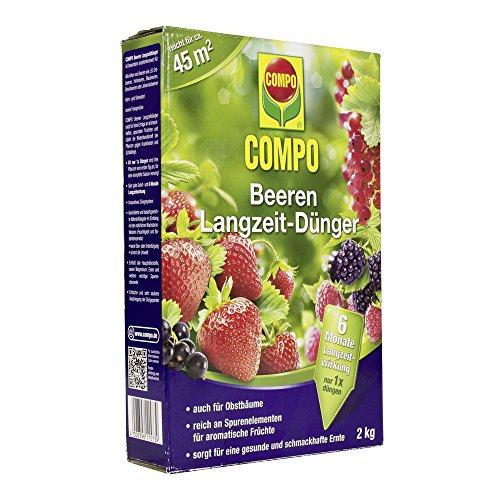 COMPO Beeren Langzeit-Dünger für alle Arten von Beeren sowie Obst  6 Monate Langzeitwirkung, 2 kg, 45m²
