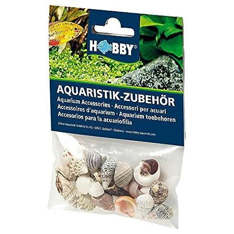 Hobby 40221 Sea Shells Set, S