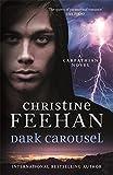 Dark Carousel: Dark Carpathian