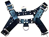 Rouge Garments Large Black O.T Harness with 2-D Rings
