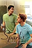 Sparks (Something in Common Book 2) (English Edition)