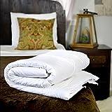 Silk Bedding Direct Piumone Riempito di Seta. Letto Singolo (GB). Utilizzo Primavera/Autunno. 100% Seta di Gelso. Anallergico. 200cm X 140cm. Prezzo Basso di Vendita