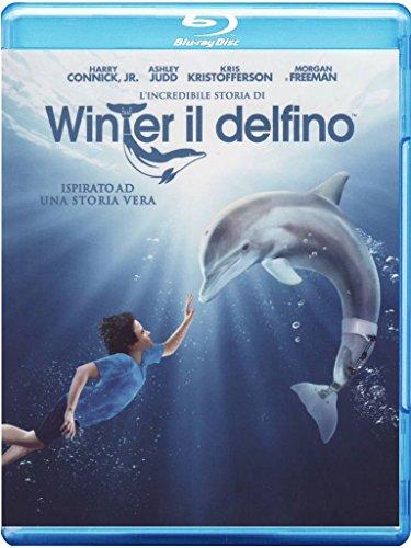 L'incredibile storia di Winter il delfino [Blu-ray] [IT Import]