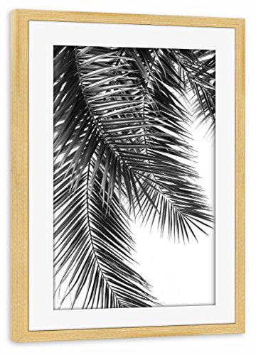 artboxONE Poster mit Rahmen kiefer 75x50 cm Black and White Palm Leaves von Lexie Greer - gerahmtes Poster (Palm Leaf White)