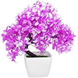 TiedRibbons® Artficial Bonsai Indoor Plants With Pot | Bonsai Artificial Plants With Pot | Bonsai Plants With Pots | Diwali Items For Decoration Of Home