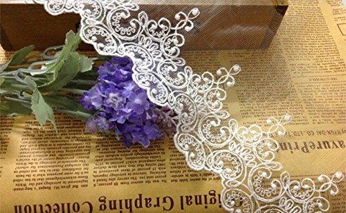 Lace Trim Blumen Brautschmuck/Hochzeit Kleid Stoff Tischdecke DIY Crafts Scallop Trim Applikation Kleidung Vorhänge 5Meter 10cm breit ale03, weiß, 4,5 m