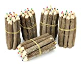 Thai Albero Ramo Ramoscello Pencil Bundle - Extra Small Size - multicolore - multipack 5 Bundle
