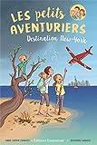 les petits aventuriers / Anne-Sophie Chauvet. 1 | Chauvet, Anne-Sophie. Auteur