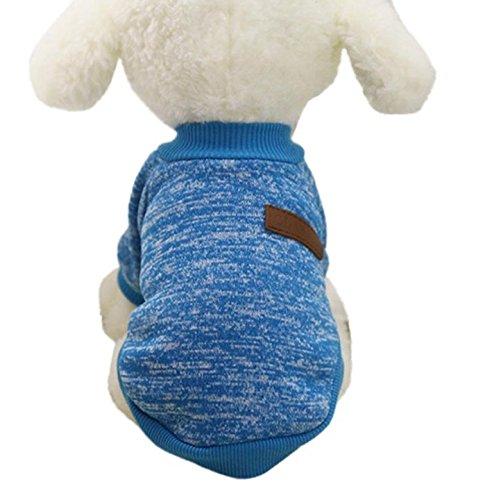 tes Hundekleidung Haustier warm Kleidung ,Blau,L ()