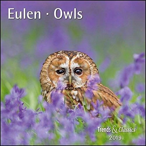 Eulen Owls 2019 - Broschürenkalender - Wandkalender - mit herausnehmbarem Poster - Format 30 x 30 cm